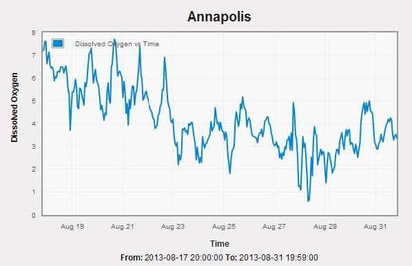 Annapolis DO 0813