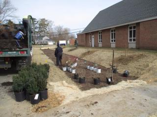 Church rain garden planting 3