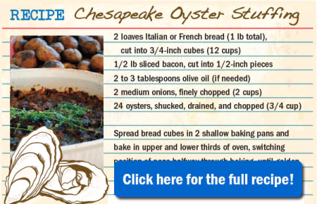 OysterStuffing_600x386